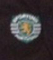 2001/02, formação do Sporting. Equipamento alternativo de mangas compridas, de jogo