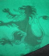 2010/11. Camisola alternativa de mangas compridas, preparada Marco Caneira