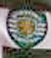 Sporting Jardel 2001 2002 club crest