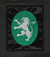 camisola do Sporting Stromp do centenario 05 06 emblema
