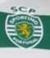 camisola falsa do Sporting 2011/12 shirt