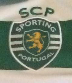 Camisola do William Carvalho usada na segunda parte do jogo contra o Arouca de 19/03/2016. As camisolas foram leiloadas, com a verba a reverter para a Missão Pavilhão