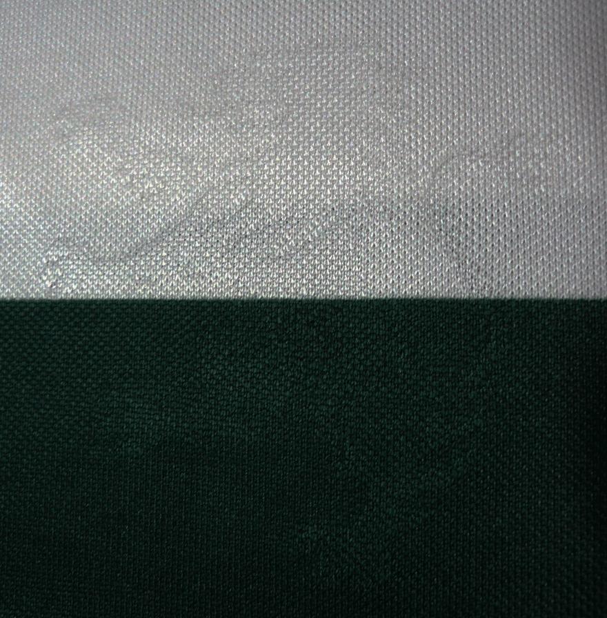 21 leões embebidos no tecido na parte da frente da camisola