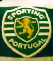 hoquei em patins 2009 Sporting Torcida Verde