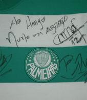 Palmeiras club crest goal keeper shirt