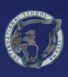 Vienna International School Basketball team - shirt