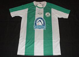Kasetsart University F.C. shirt