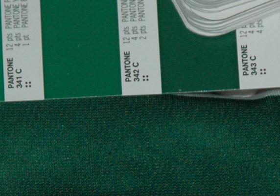 verde Sporting 2004 05 Pantone 343c