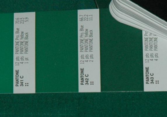 verde Sporting 2006 07 Pantone 343c